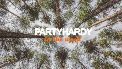 PARTYHARDY IN THE WOOD 16.07.2017