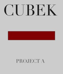 CUBEK - Project A
