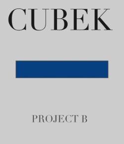 CUBEK – PROJECT B